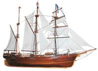 Sydney Belle